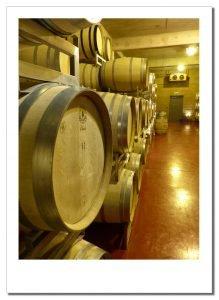 Wine barrels. Bodega Ruca Malen, Mendoza, Argentina