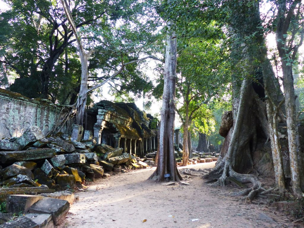 Cambodian Temple at Ta Prohm