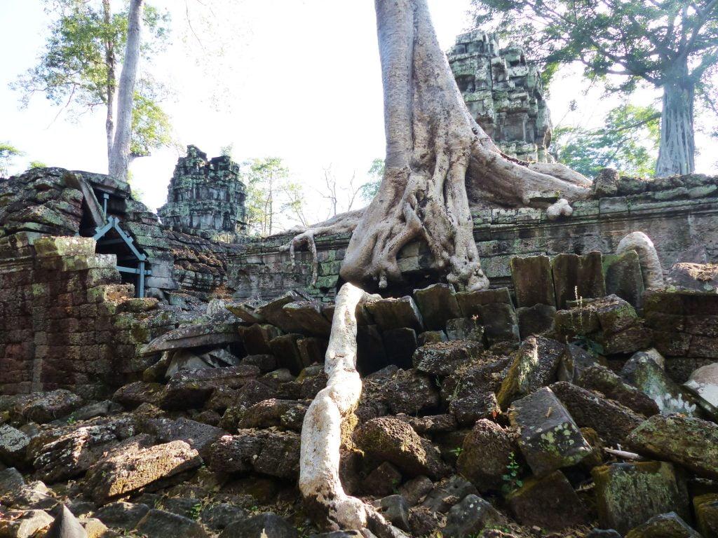 Ta-Prohm, Cambodia