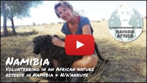 Volunteering in an African nature reserve in Namibia & N/a'ankuse - Namibia, Africa