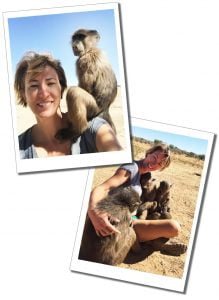 SueWhereWhyWhat and young baboons, Naankuse Wildlife Sanctuary, Namibia