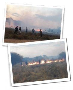 Bushfire, Namibia, Africa