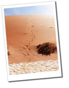 Footprints from the dunes leading to the cracked white clay floor of Dead Vlei, Namib Naukluft Park