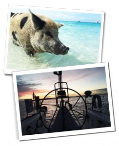Swimming pigs and sailing in the Bahamas