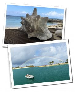 Large spiky sea shell and a motorboat on a flat, deep green sea with a rainbow behind. Turks & Caicos Islands