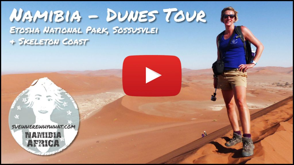 6 Day Dunes & Wildlife Tour includes Etosha National Park, Sossusvlei & Skeleton Coast - Nambia