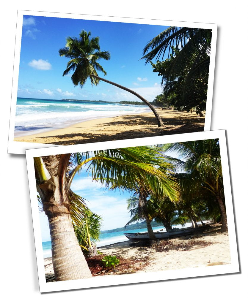 "The beautiful palm tree lined Las Terrenas Beaches. The ""most beautiful beach in DR"", Playa Rincon."