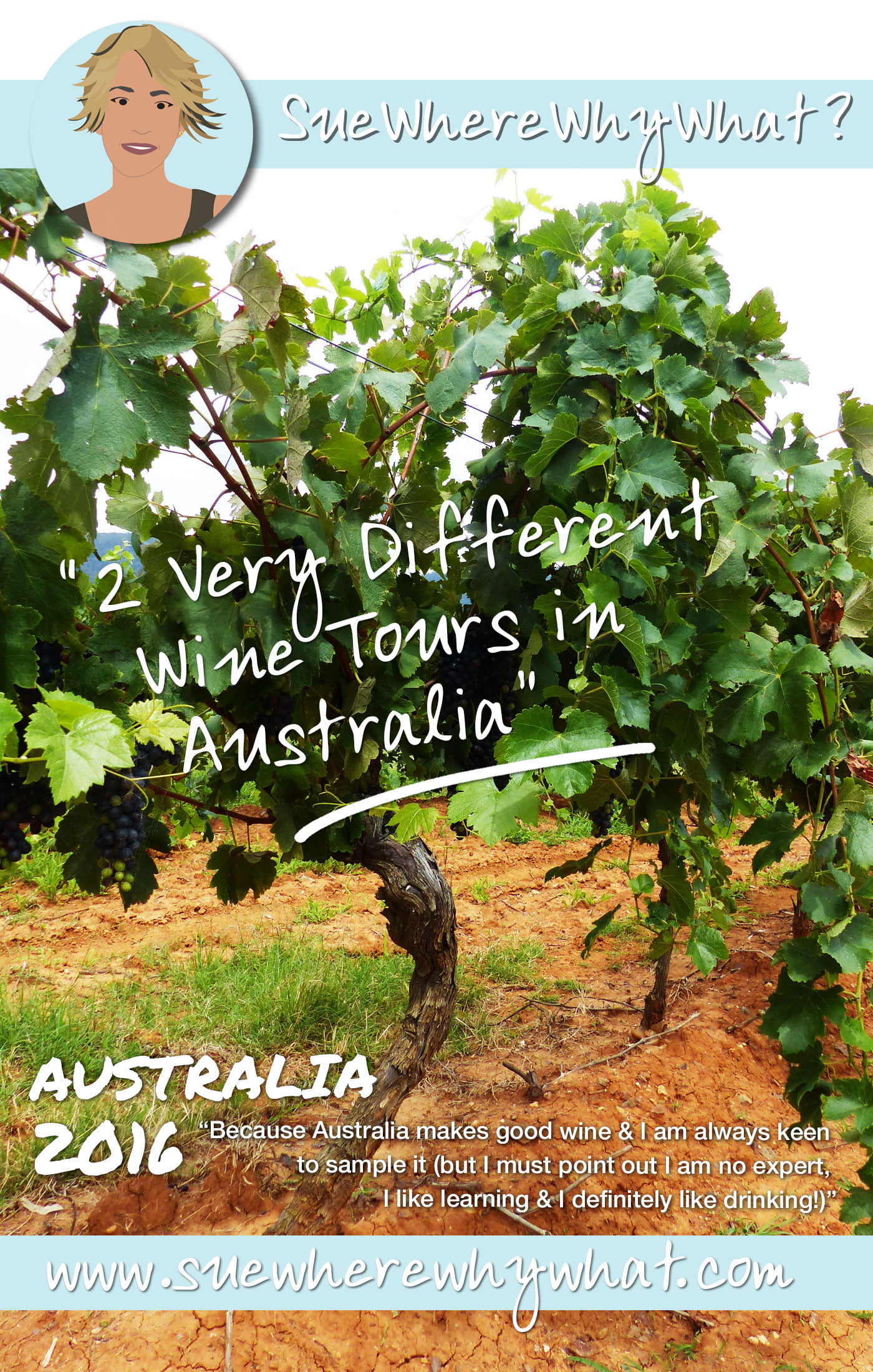 2 Very Different Wine Tasting Tours in Australia. Features Hunter Valley & Margaret River regions.  https://www.suewherewhywhat.com/activities/day-trips/2-very-different-wine-tasting-tours-in-australia