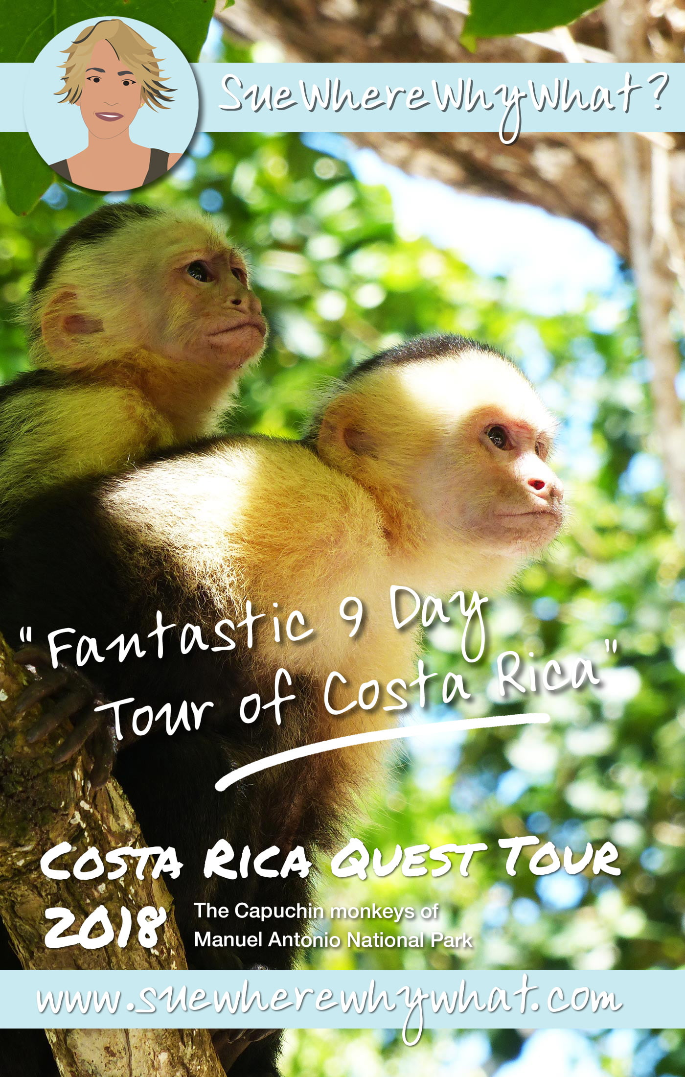 As part of 6-months in the Caribbean, I visited Costa Rica on a 9-day tour of the central region. Includes ziplining in Monteverde, canyoning & white water rafting in La Fortuna and the spectacular Manuel Antonio National Park. A perfect way to see the rainforest & the wildlife of this beautiful country.  https://www.suewherewhywhat.com/activities/fantastic-9-day-tour-of-costa-rica