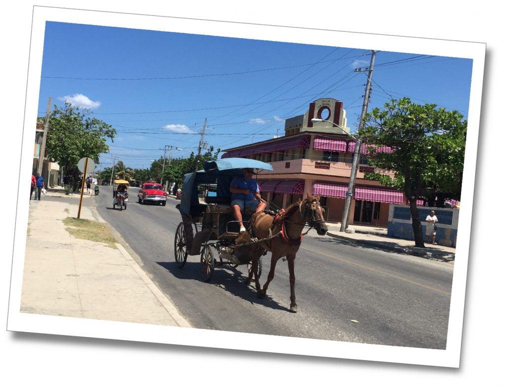 Horse & cart on a sunny Cuban street