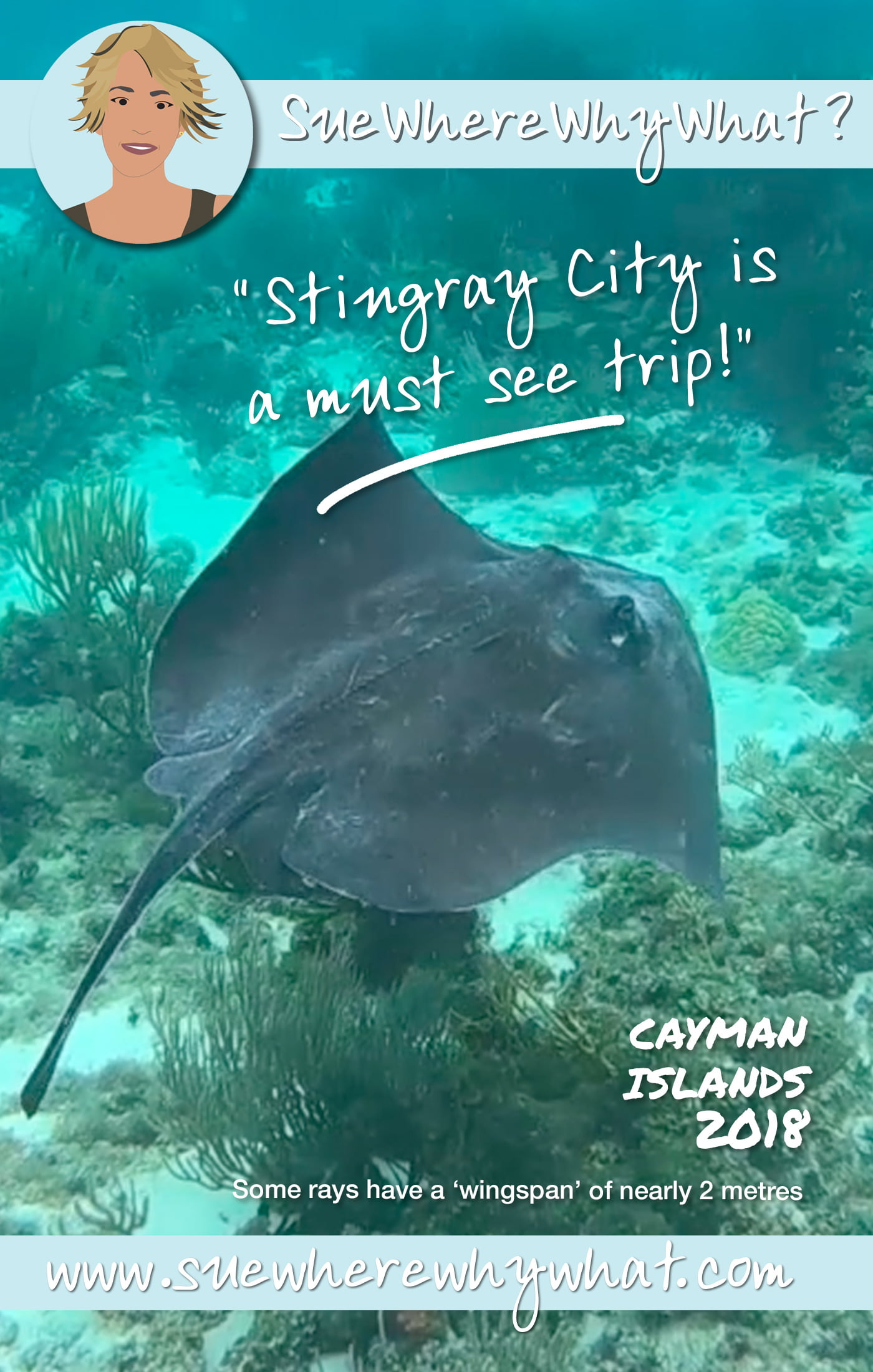 All You Need To Know About Housesitting...in Grand Cayman offers an opportunity of Free Accommodation while living like a local in locations across the world.  Includes Pet Sitting, Things To Do in Grand Cayman in the Caribbean, Seven Mile Beach, Snorkeling with Sting Rays in Sting Ray City