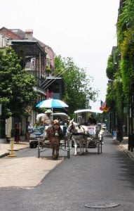 Horse & Cart, New Orleans