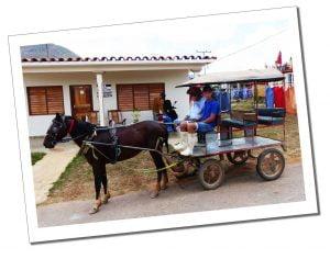 Horse & cart, awaits it's passengers, Viñales, Cuba