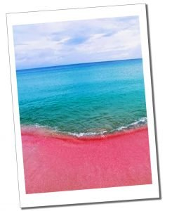 The amazing pink sand of Barbuda's beaches.
