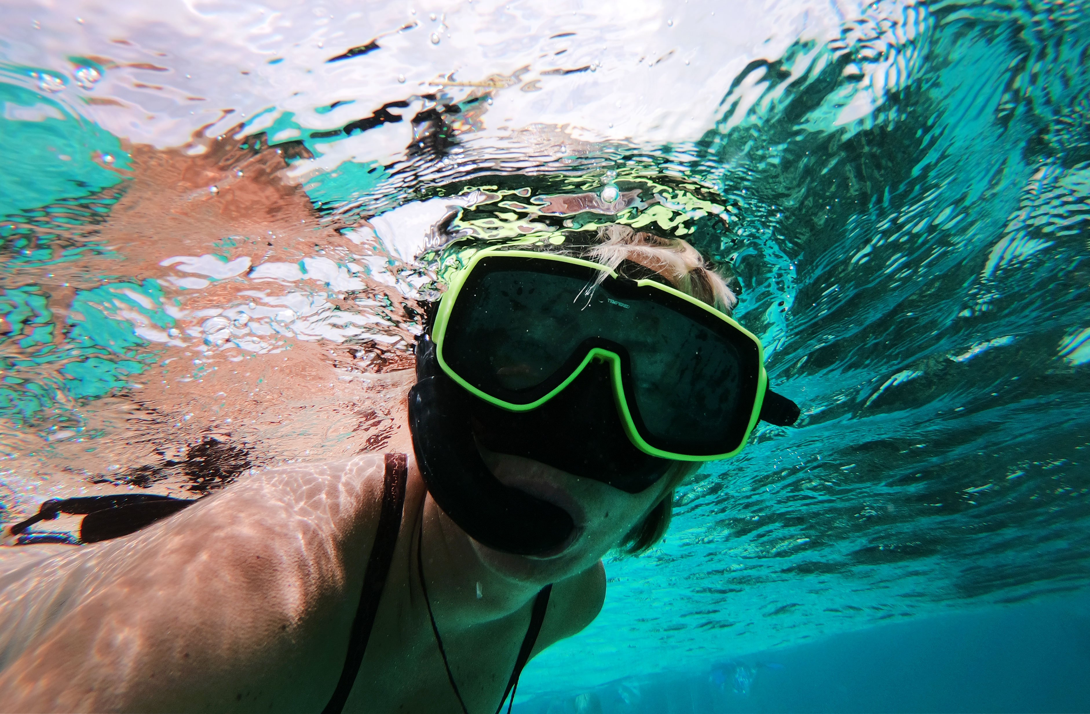 Suewherewhywhat, underwater snorkelling, Grand Cayman. All You Need To Know About Housesitting in Grand Cayman. All You Need To Know About Housesitting in Grand Cayman
