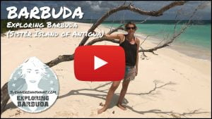 Exploring Barbuda (Sister Island of Antigua) - Caribbean
