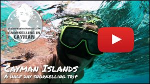 The Cayman Islands - A half day snorkelling trip - Caribbean, Central America & Caribbean