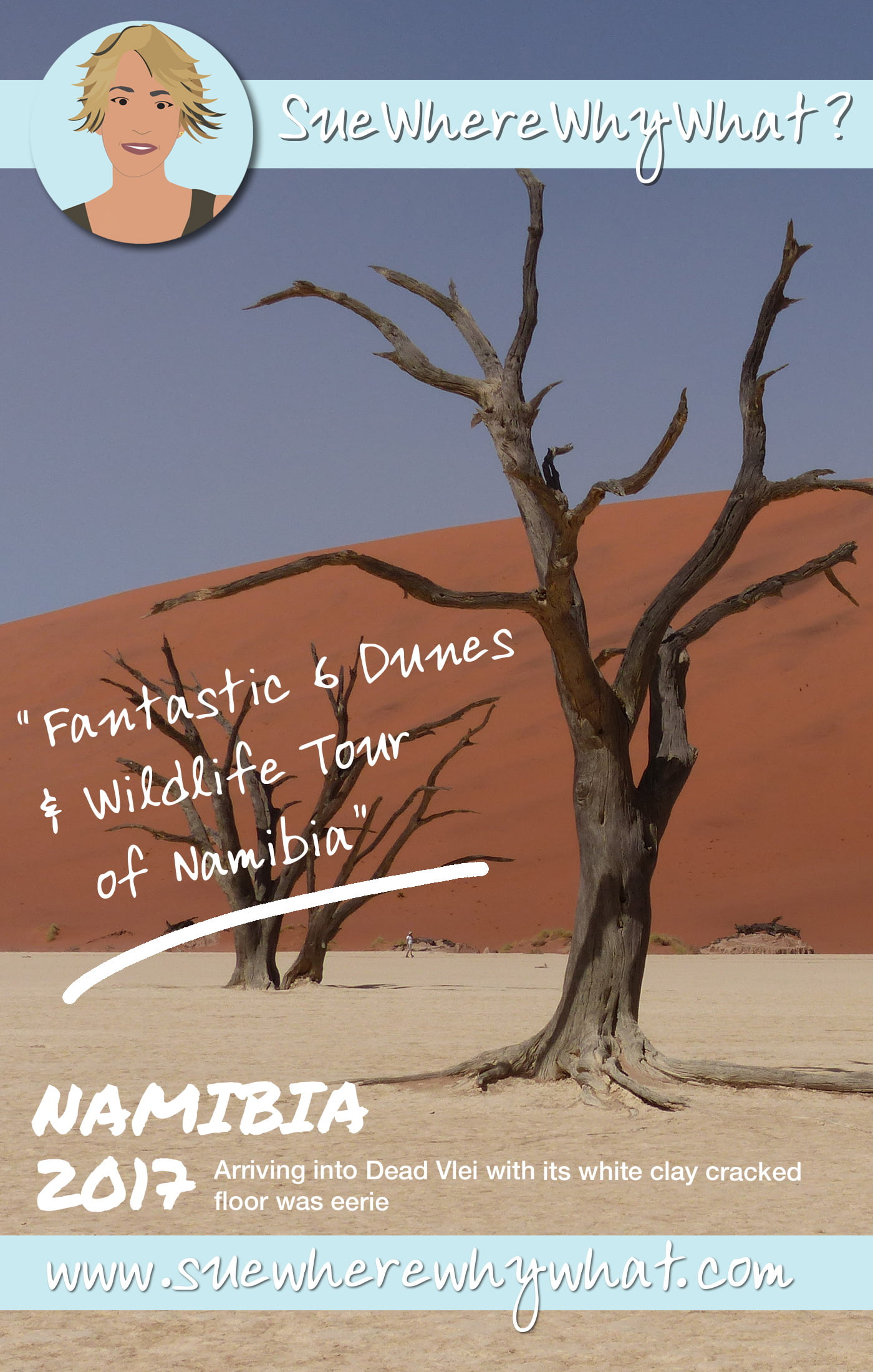 Fantastic 6 Dunes & Wildlife Tour of Namibia. My top tips of the best places in Namibia. Includes the wildlife of Etosha National Park, the Sand Dunes of Sossusvlei, Skeleton Coast. Starting & finishing in Windhoek. https://www.suewherewhywhat.com/destinations/africa/fantastic-6-dunes-wildlife-tour-of-namibia