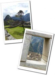 A single tree & Inca buildings, Mach Picchu, Peru