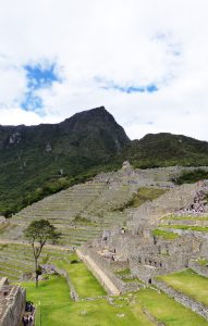 The Stepped lawns of Machu Picchu