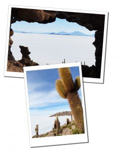 Views of the vast Salt flats from the Cactus island at, Inca huasi, Bolivia