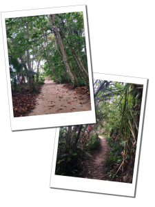Cahuita – For trail walking in the National Park, Caribbean Coast, Costa Rica