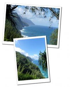 Treelined cliffs & the sea on the Kalalau Trai, Hawaii