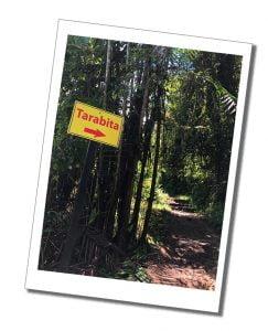 Sign Post for Tarabita, Mindo Ecuador
