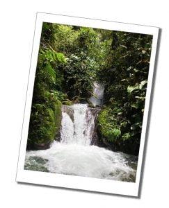 Waterfall Hike Madre, Mindo, Ecuador.