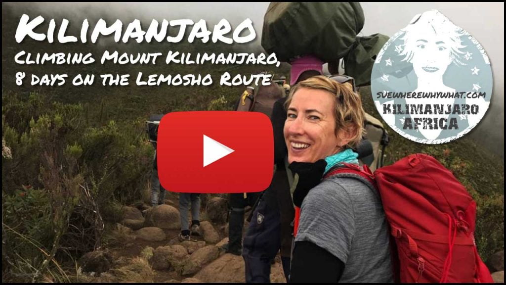 Climbing Mount Kilimanjaro, 8 days on the Lemosho Route - Tanzania, Africa
