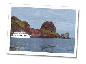Bucaneer-Cove-Yolita-Boat-&-Darwins-Cake