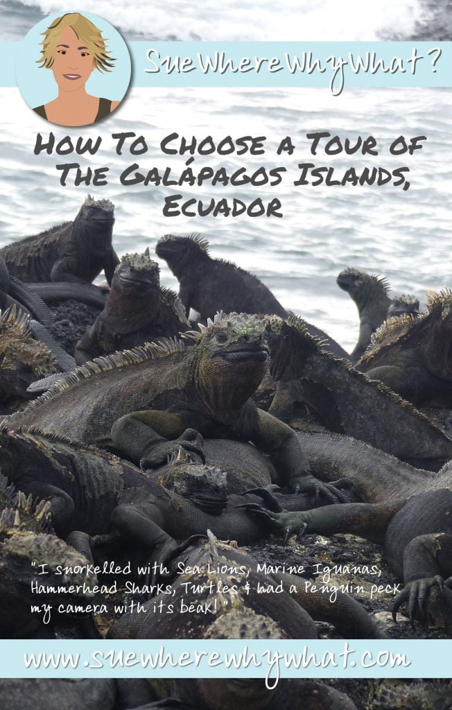 How To Choose Your Galápagos Tour. Rich Pin