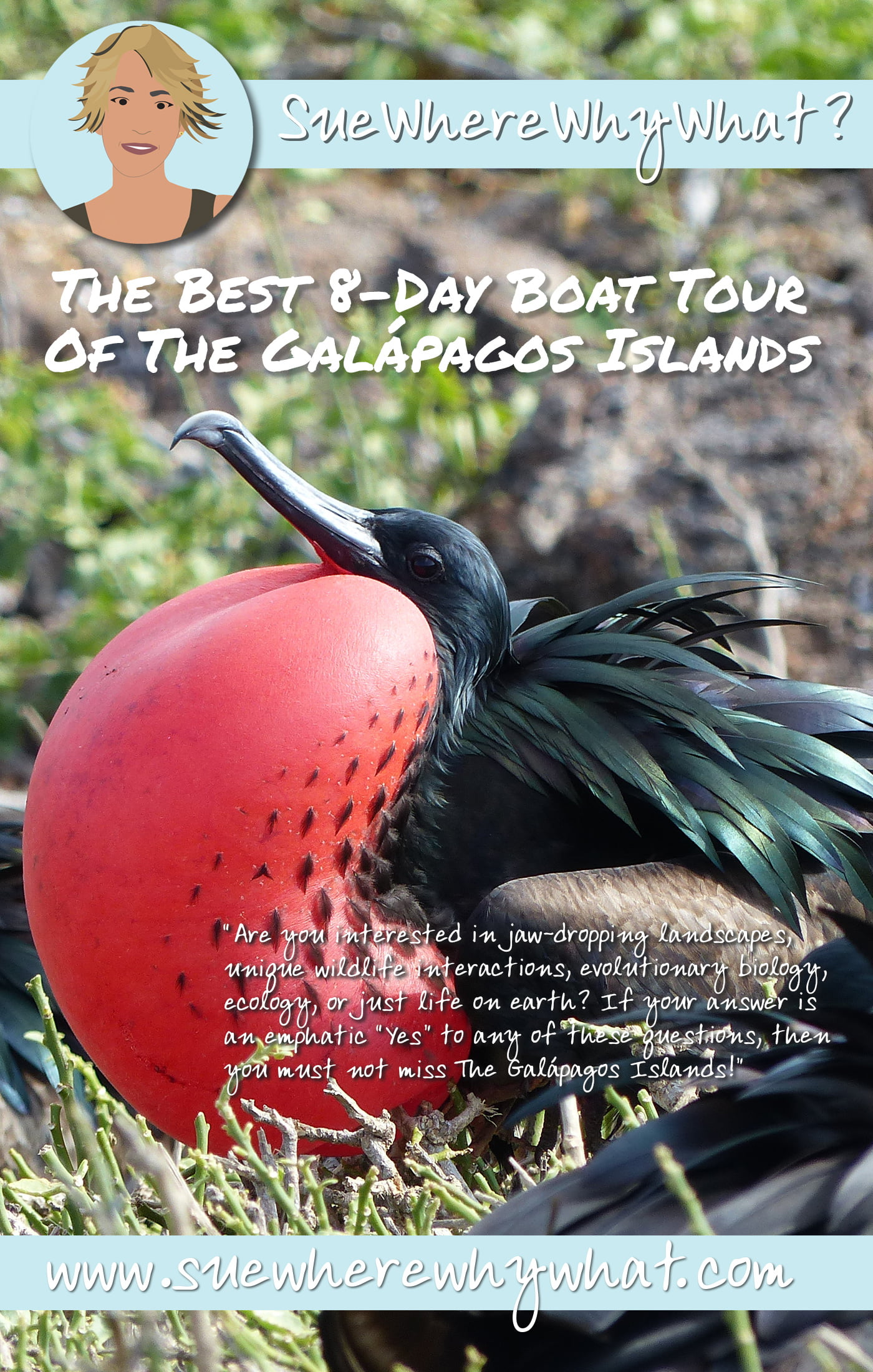 Amazing 8-Day Boat Tour Of The Galápagos Islands