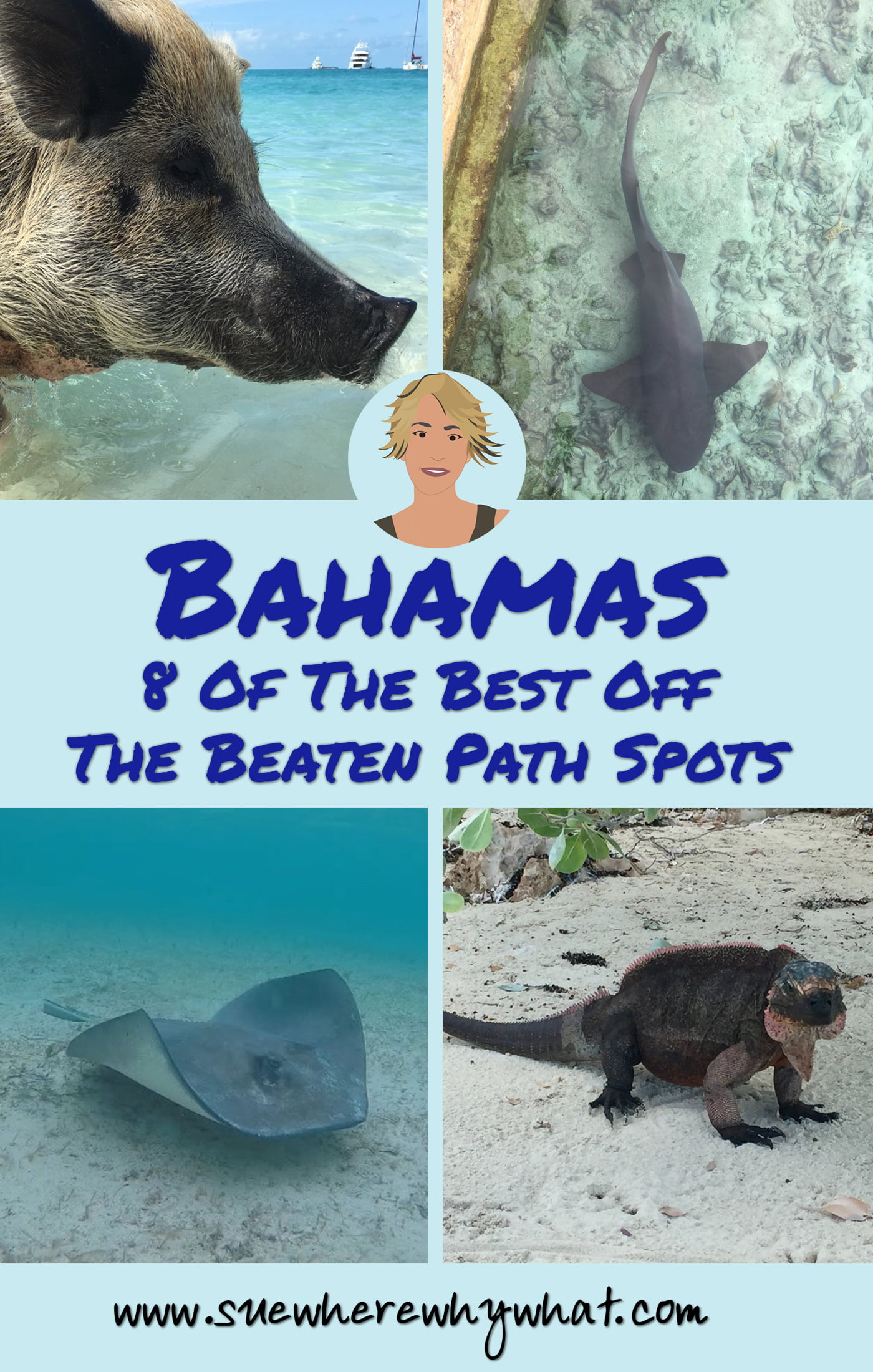8 Of The Best Off The Beaten Path Spots In The Bahamas including a plane wreck, an island full of iguanas, stroking sharks, feeding turtles & sting rays, swimming with pigs & snorkelling in the cave lagoon paradise that is James Bonds 'Thunderball Grotto'.