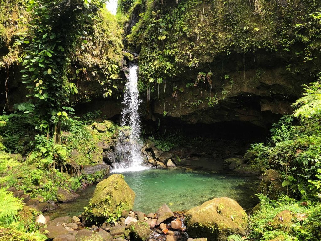 Waterfall at the Emerald Pool, Dominica