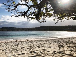 Sunny Half Moon Bay, Antigua