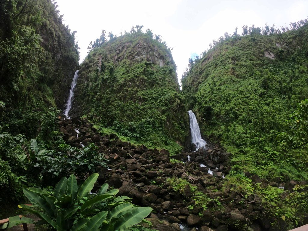 Green vegetation punctuated by the Trafalgar Falls, Dominica