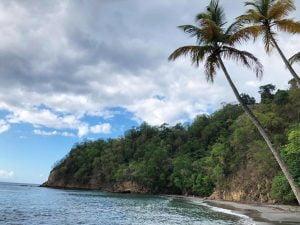 Anse Ceron, Martinique, Galápagos Islands