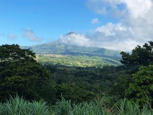 Mont Pelee, Martinique