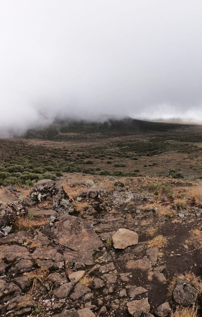Climbing Mount Kilimanjaro in 8 Days – Lemosho Route