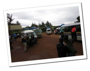 Buses arrive at the Weigh in, Mount Kilimanjaro day 1 Londorosi Gate