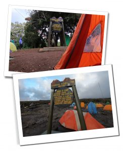Big Tree Camp, tents and sign at Mount Kilimanjaro, day 1