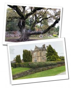 Muckross House and Gardens, Ring of Kerry, Ireland