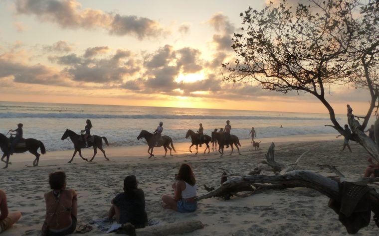 Horses on Santa Teresa beach, Costa Rica