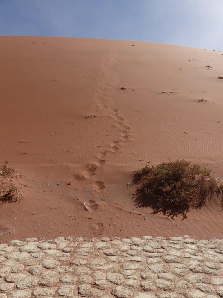Foot prints, Sand Dunes, Sossusvlei, Namibia