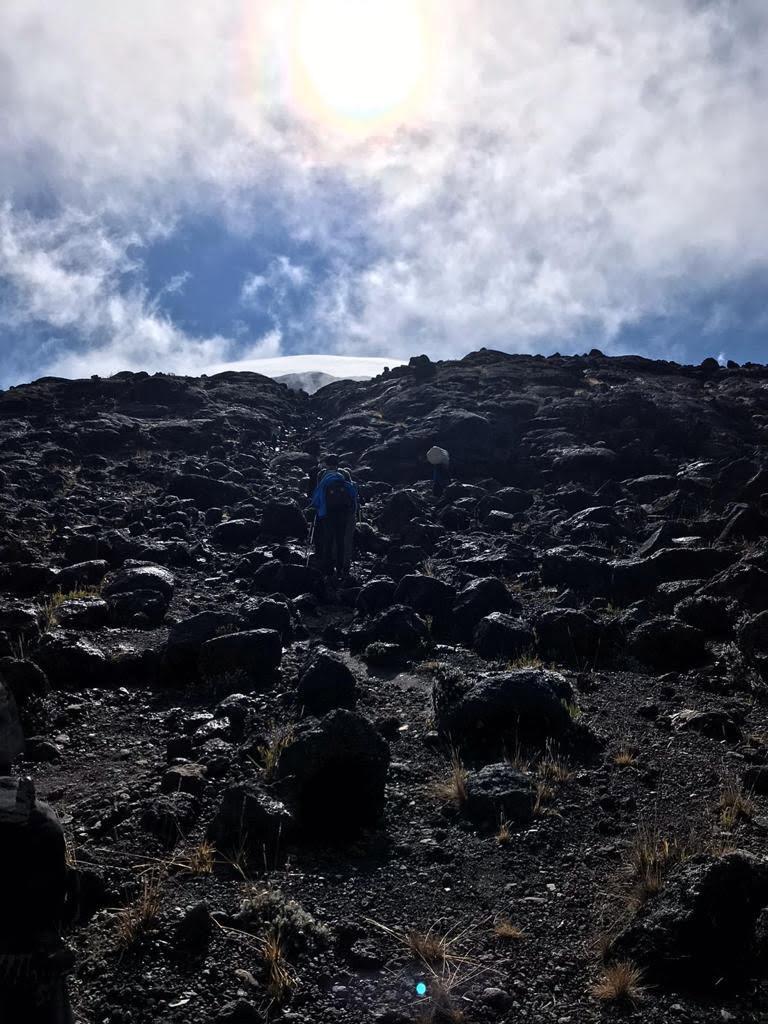 Lemosho Route, Mount Kilimanjaro