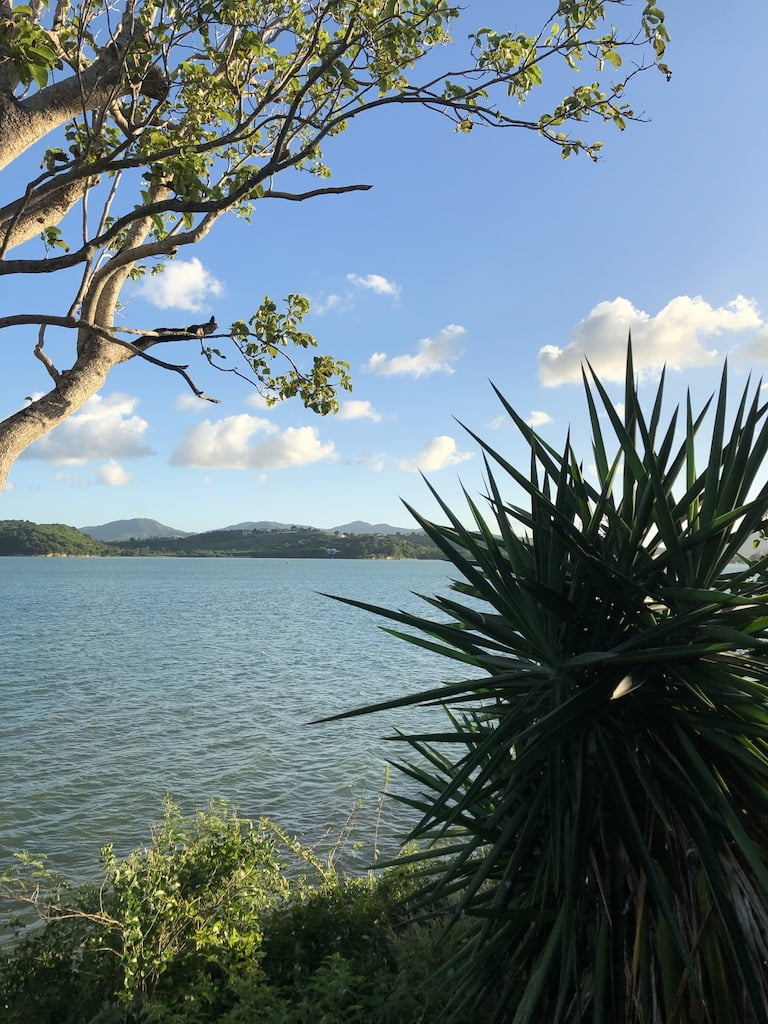 Calm sea view, Antigua