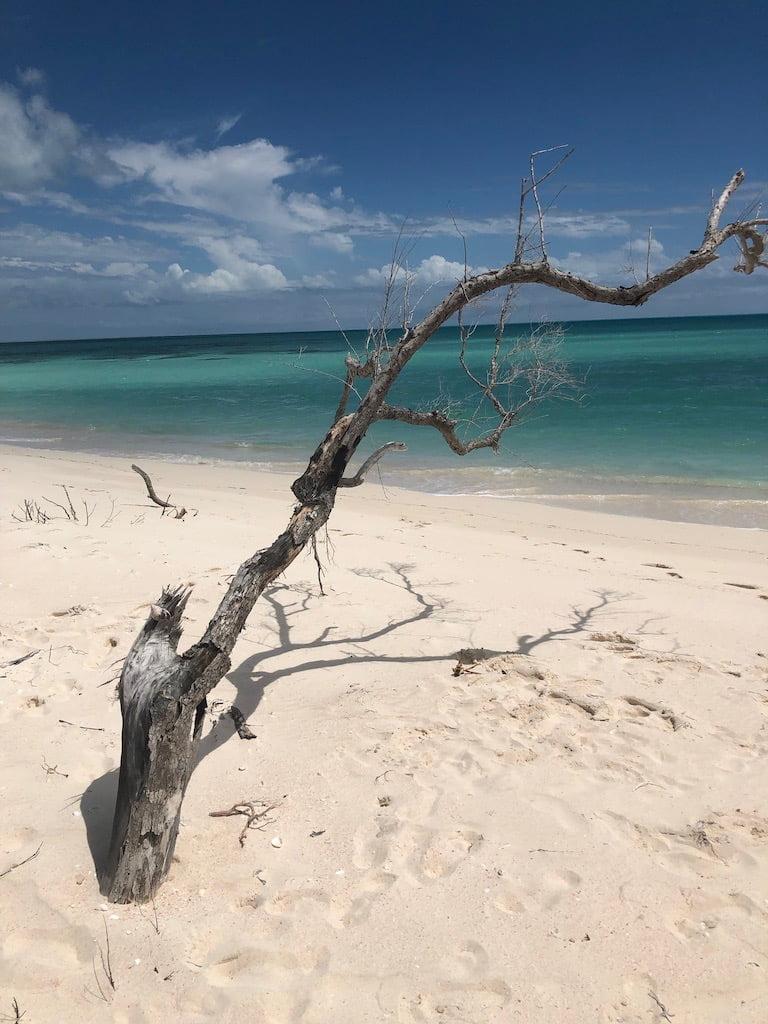 Princess Diana beach, Barbuda