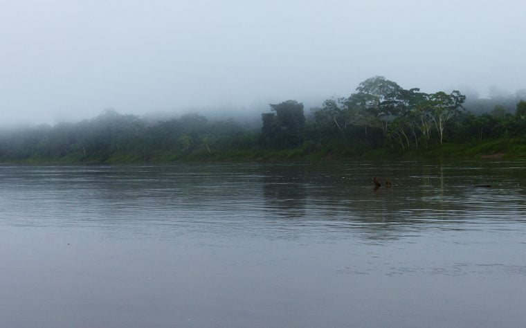 River Amazon, Peru