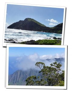 Hawaiian Beach and Mountains